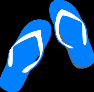 blue-flip-flops-md